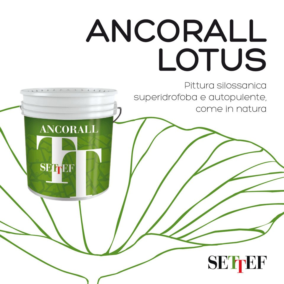 ANCORALL-LOTUS-SETTEF