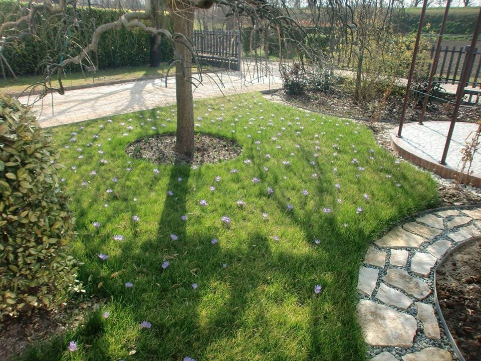 Giardino del sole: Inverno