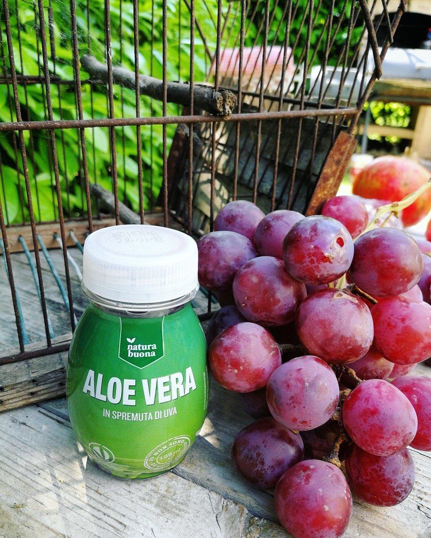 estratto Natura Buona di Aloe Vera in pura spremuta di Uva