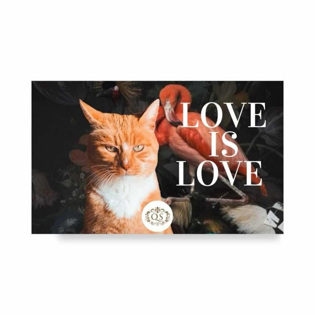 buono regalo san valentino animali articoli bellezza e per la casa